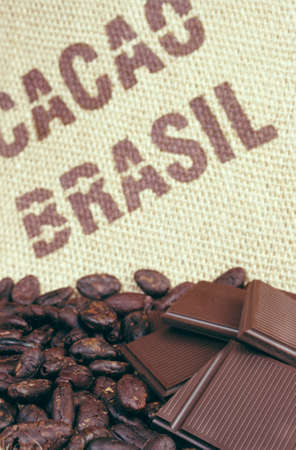 Cacao beans and hessian photo