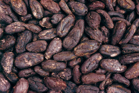 deliciously: Cocoa beans - background