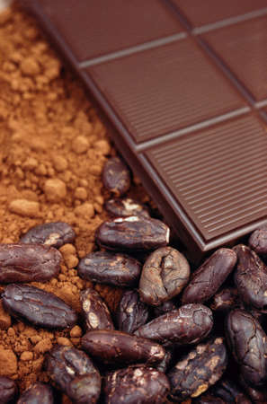 cocoa fruit: Bar of chocolate, cocoa beans , cocoa powder Stock Photo