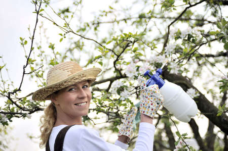 Young woman spraying apple tree Stock Photo