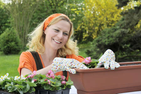 ornamental horticulture: Woman planting flowers