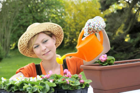ornamental horticulture: Young woman watering flowers