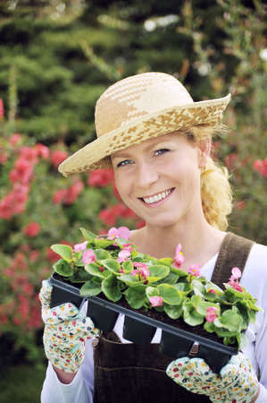 transplants: Woman with container-grown plants