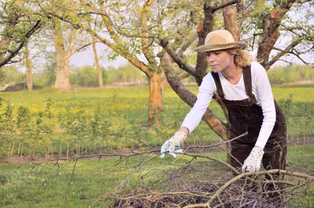 grower: Young woman cleaning tree limbs Stock Photo