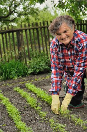 replant: Donna senior di giardinaggio