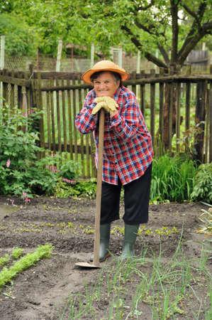 one senior adult woman: Mujer senior de jardiner�a Foto de archivo