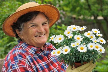 replant: Donna senior di giardinaggio Archivio Fotografico