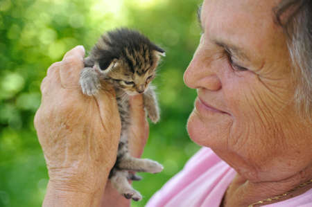 Senior woman holding kitten Stock Photo - 6117137