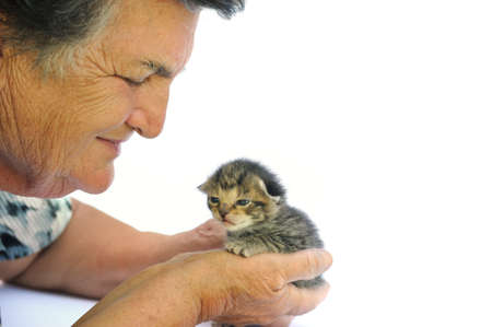 Senior woman holding kitten photo