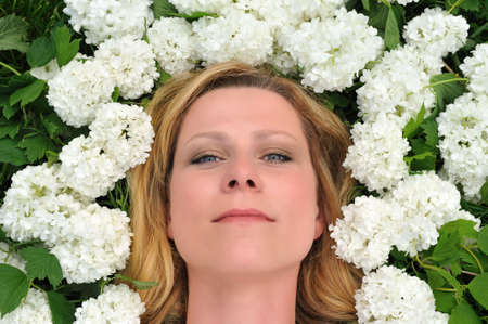 Young woman laying in flowers - snowballs Stock Photo - 6181264