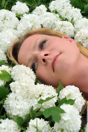 Young woman laying in flowers - snowballs Stock Photo - 6181272