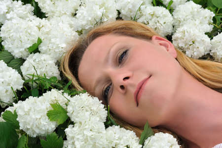 Young woman laying in flowers - snowballs Stock Photo - 6181258