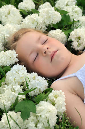 3 persons only: Little girl laying in flowers - snowball Stock Photo