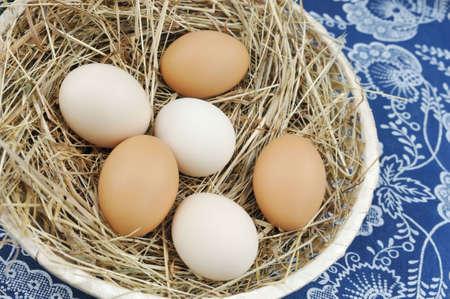 dozens: Fresh farm eggs Stock Photo