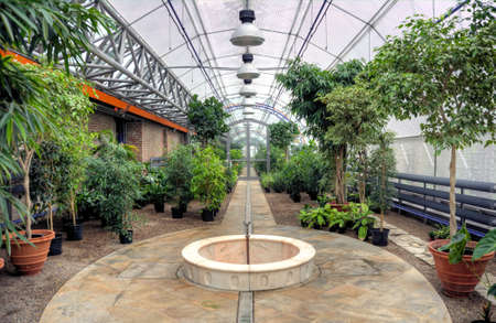 plant design: Flowers in modern greenhouse
