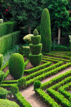 architectural architectonic: Decorative green park - Botanical garden Funchal, Madeira