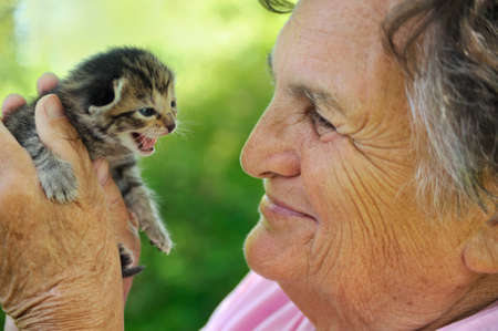 75 80: Senior woman holding kitten