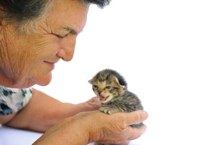 Senior woman holding kitten Stock Photo - 8113429