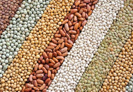 Mieszaniny suszonych soczewica, groch, soja, fasola - tło