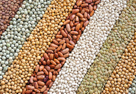 Mixture of dried lentils, peas, soybeans, beans  - background Stock Photo - 8411875