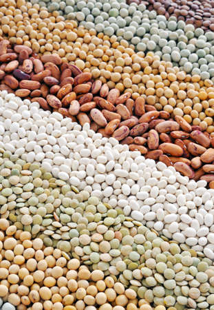 Mixture of dried lentils, peas, soybeans, beans  - background Stock Photo - 8411867