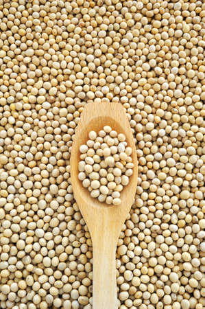 agglomeration: Wooden spoon and dried soybeans