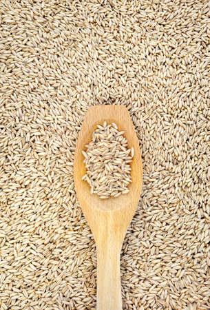 Wooden spoon and dried husked oats Stock Photo - 8411880