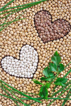 렌즈 콩: Lentils, soybeans, beans with herbs - pulse concept