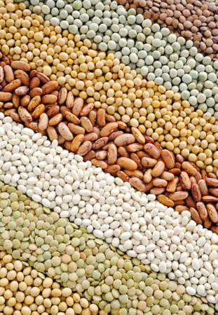 Mixture of dried lentils, peas, soybeans, beans  - background Stock Photo - 8438162