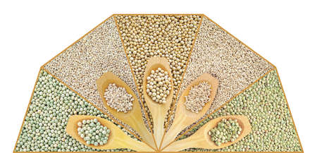 Collage of dry lentil, pea, soybean, oat and barleycorn photo