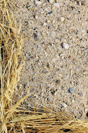 Detail of dry grass hay and sand - frame photo