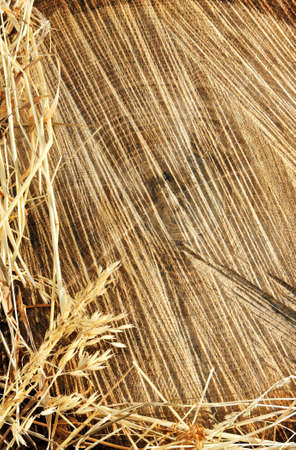 Detail of wooden cut texture and dry grass hay - frame photo