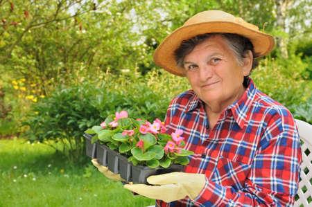 75 80: Senior woman - gardening