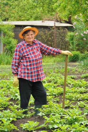 Senior woman gardening photo