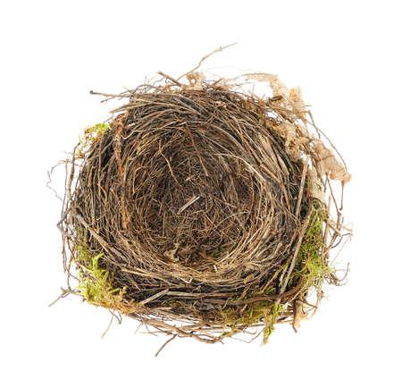 nest: Detail of blackbird nest isolated on white