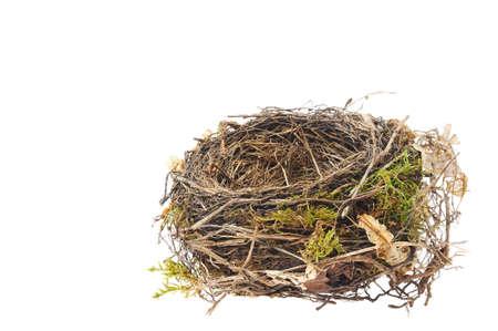 Detalle de nido de mirlo aislado en blanco Foto de archivo