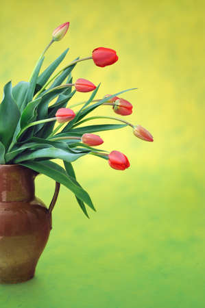 Red tulips in old fashioned jug over colored background photo