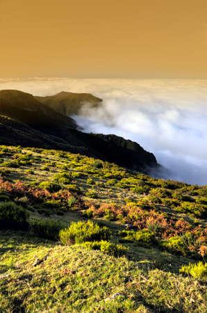 Valley, Lomba de Risco,  Plateau of Parque natural de Madeira, Madeira island, Portugal photo