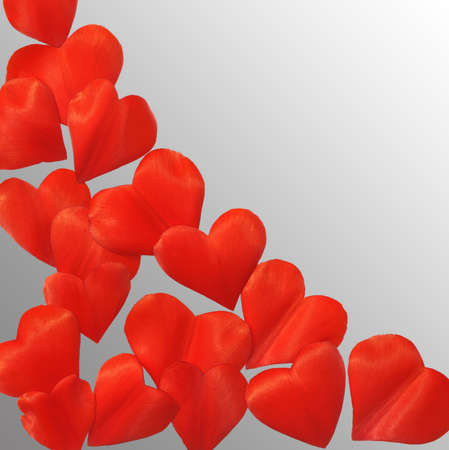 Petals in heart shape over gray background - frame. Clipping path included. Stock Photo - 9813419