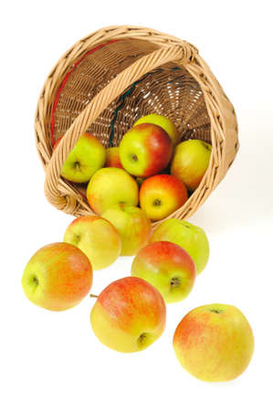 Fresh apples spilling out of basket - isolated on white background. Clipping path included. photo