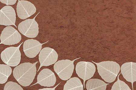Skeletal leaves over brown handmade paper - frame Stock Photo - 9813431