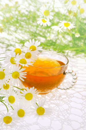 phytotherapy: Cup of chamomile tea over white background