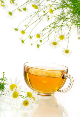 Cup of chamomile tea with fresh chamomilla flowers over white background photo