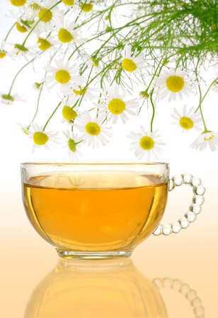 Cup of chamomile tea with fresh chamomilla flowers over colored background photo