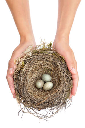 three objects: Young woman holding blackbird nest over white background Stock Photo
