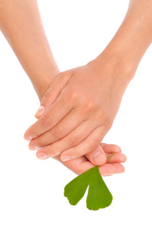 age 35 40 years: Hands of young woman holding ginkgo leaf