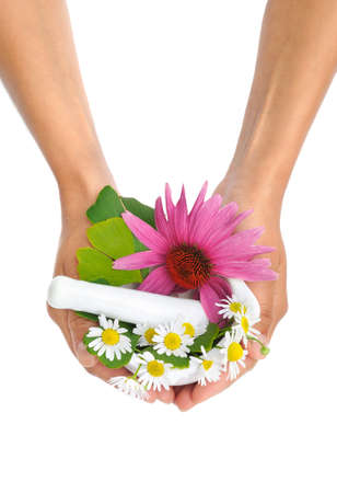 Young  woman holding mortar with herbs - Echinacea, ginkgo, chamomile photo
