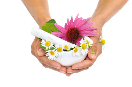 Young woman holding mortar with herbs - Echinacea, ginkgo, chamomile