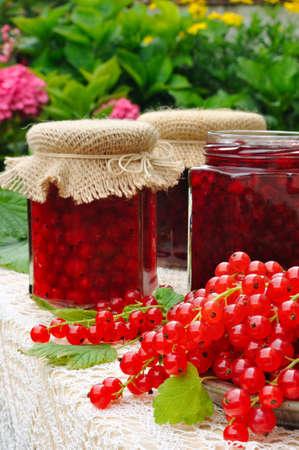 frutta sciroppata: Vasetti di marmellata di ribes rosso fatto in casa con frutta fresca Archivio Fotografico
