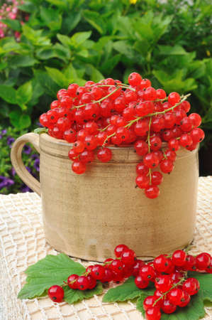 red currants: Ceramic cup full of fresh red currant berries Stock Photo